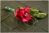 Buttonhole for Bruidsgids 2010 Advertensie