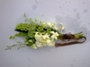 Brides Maid bouquet4 Eugene Morule and Lerato Mokone at Rooihuiskraal-Historical-Terrain
